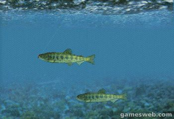 Reel Fishing  Archiv - Screenshots - Bild 4