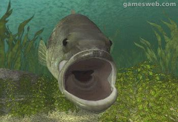 Reel Fishing  Archiv - Screenshots - Bild 2