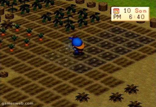 Harvest Moon - Screenshots - Bild 14