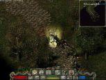 Divine Divinity - Screenshots - Bild 8