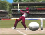 Cricket 2002  Archiv - Screenshots - Bild 3
