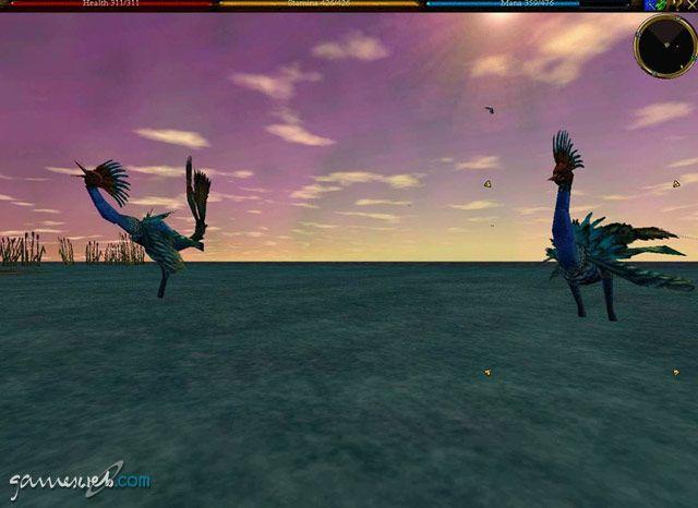 Asheron's Call: Dark Majesty  Archiv - Screenshots - Bild 17