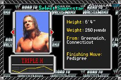 WWF Road to Wrestlemania - Screenshots - Bild 5