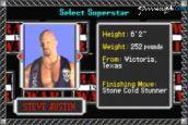 WWF Road to Wrestlemania - Screenshots - Bild 10