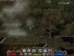 Divine Divinity - Screenshots - Bild 4
