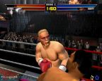 Mike Tyson Heavyweight Boxing  Archiv - Screenshots - Bild 2