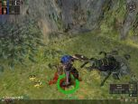 Dungeon Siege - Screenshots - Bild 18