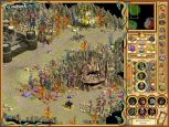 Heroes of Might & Magic IV - Screenshots - Bild 5