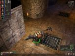 Dungeon Siege - Screenshots - Bild 7