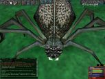 Dark Age of Camelot - Screenshots - Bild 12