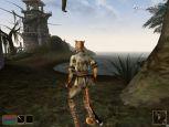 The Elder Scrolls III: Morrowind - Screenshots - Bild 17
