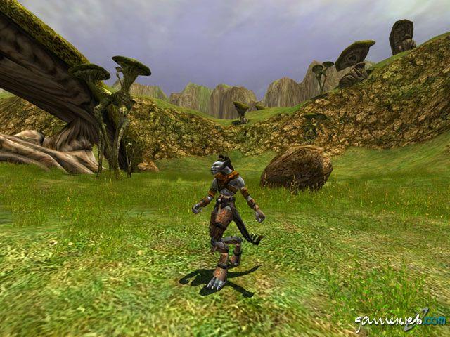 Asheron's Call 2  Archiv - Screenshots - Bild 5