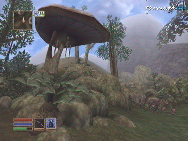 The Elder Scrolls III: Morrowind - Screenshots - Bild 23