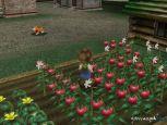 Harvest Moon: A Wonderful Life  Archiv - Screenshots - Bild 34