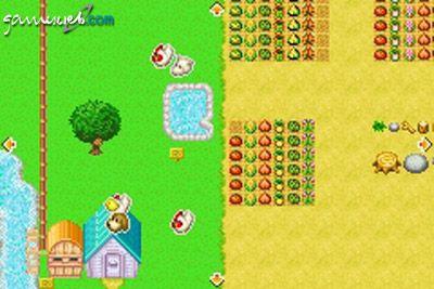Harvest Moon: Friends of Mineral Town  Archiv - Screenshots - Bild 25