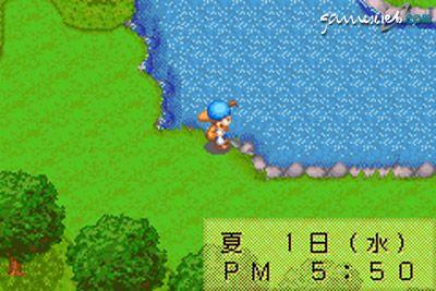 Harvest Moon: Friends of Mineral Town  Archiv - Screenshots - Bild 5
