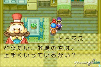 Harvest Moon: Friends of Mineral Town  Archiv - Screenshots - Bild 7