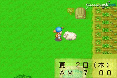 Harvest Moon: Friends of Mineral Town  Archiv - Screenshots - Bild 14
