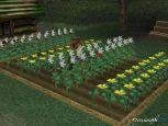Harvest Moon: A Wonderful Life  Archiv - Screenshots - Bild 19