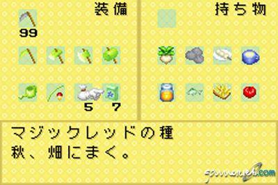 Harvest Moon: Friends of Mineral Town  Archiv - Screenshots - Bild 13