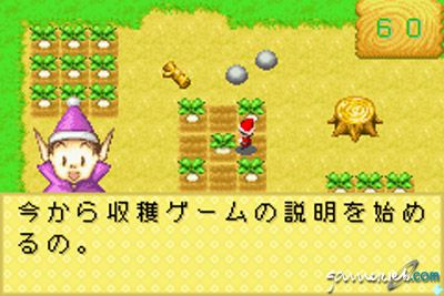 Harvest Moon: Friends of Mineral Town  Archiv - Screenshots - Bild 8