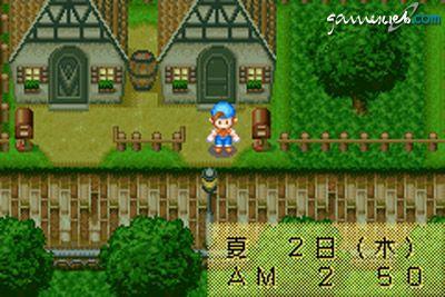 Harvest Moon: Friends of Mineral Town  Archiv - Screenshots - Bild 9