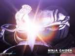 Ninja Gaiden  Archiv - Screenshots - Bild 7