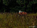 Colin McRae Rally 04  Archiv - Screenshots - Bild 8