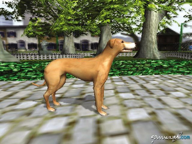 Dog's Life  Archiv - Screenshots - Bild 44