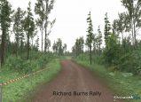 Richard Burns Rally  Archiv - Screenshots - Bild 27