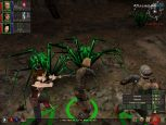 Dungeon Siege - Screenshots - Bild 4