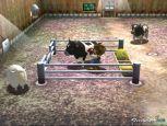Harvest Moon: A Wonderful Life - Screenshots - Bild 4