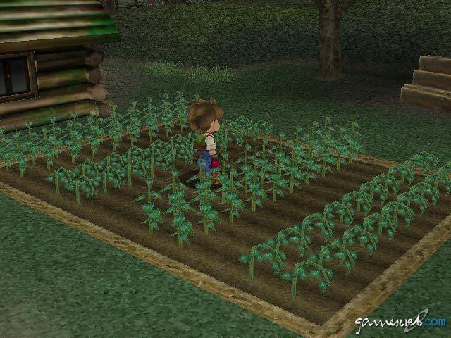 Harvest Moon: A Wonderful Life - Screenshots - Bild 2
