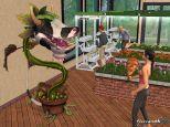 Die Sims 2: Wilde Campus-Jahre  Archiv - Screenshots - Bild 4