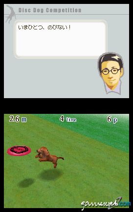 Nintendogs (DS)  Archiv - Screenshots - Bild 19