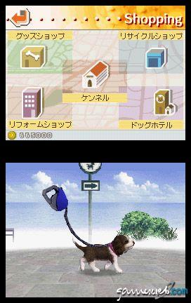 Nintendogs (DS)  Archiv - Screenshots - Bild 21