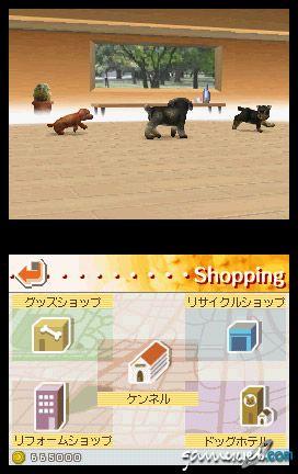 Nintendogs (DS)  Archiv - Screenshots - Bild 16