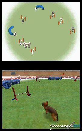 Nintendogs (DS)  Archiv - Screenshots - Bild 20