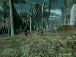 Star Wars Galaxies: Episode 3 - Rage of the Wookiees  Archiv - Screenshots - Bild 13