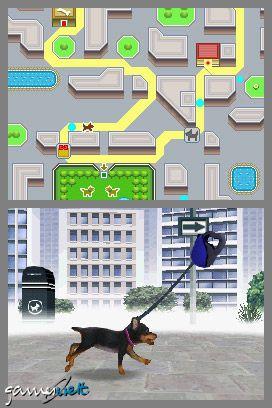 Nintendogs (DS)  Archiv - Screenshots - Bild 14
