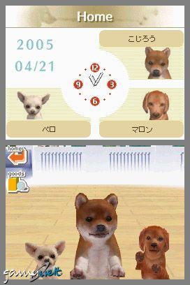 Nintendogs (DS)  Archiv - Screenshots - Bild 13