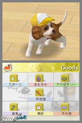Nintendogs (DS)  Archiv - Screenshots - Bild 15