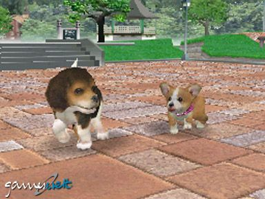 Nintendogs (DS)  Archiv - Screenshots - Bild 11