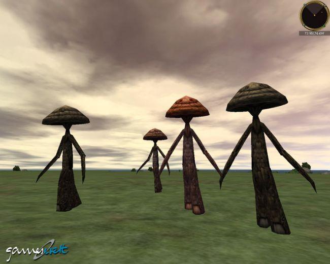 Asheron's Call: Throne of Destiny  Archiv - Screenshots - Bild 10