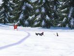 Ski Racing 2006  Archiv - Screenshots - Bild 6