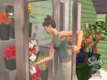 Die Sims 2: Open For Business  Archiv - Screenshots - Bild 17