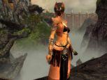Guild Wars: Factions  Archiv - Screenshots - Bild 35