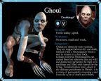 Dark Messiah of Might & Magic  Archiv - Artworks - Bild 9