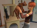 Die Sims 2: Haustiere  Archiv - Screenshots - Bild 23