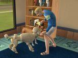 Die Sims 2: Haustiere  Archiv - Screenshots - Bild 16